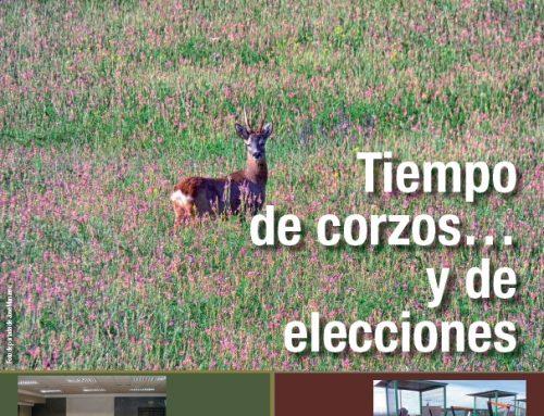 Revista Cazadores de Castilla y León nº 10