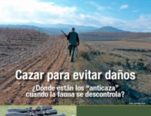 Revista Cazadores de Castilla y León nº 12