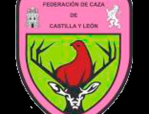 Resultados Campeonato de Castilla y León de Caza menor con perro