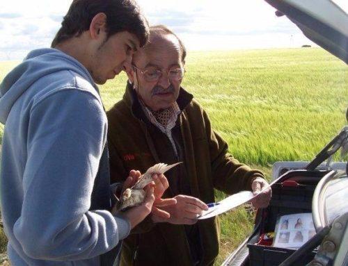 Las tres especies más problemáticas de caza mayor, Jose luis Garrido Presidente Honorífico de la Federación de Caza de Castilla y León