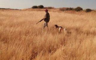 Un cazador otea el campo en busca de una presa. Foto L.O.Z.