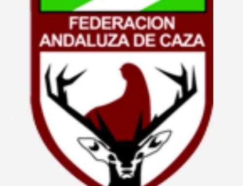 Teresa Rodríguez, líder de Podemos Andalucía, contra la caza con arco