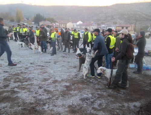XXIX Campeonato de Castilla y León de Caza Menor con Perro