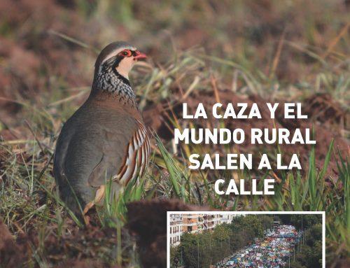 Revista Cazadores de Castilla y León nº 13