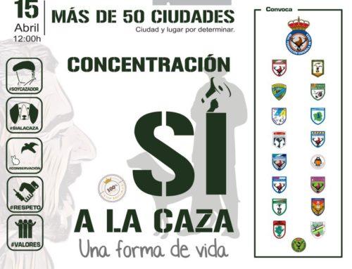 Concentraciones del 15 de abril en Castilla y León