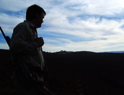 Los cazadores, en pie de guerra contra Podemos por su última propuesta animalista
