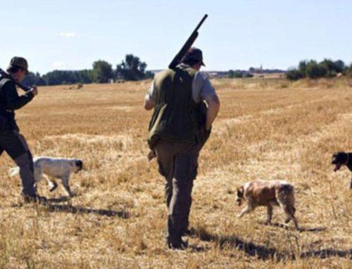 Los cazadores, a examen el día 26 de abril para obtener la licencia