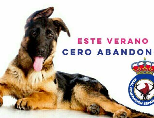 campaña #CeroAbandono