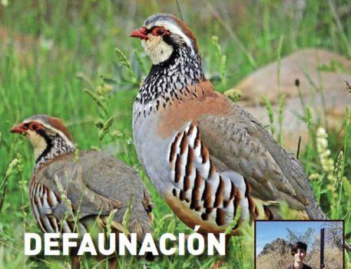 Revista Cazadores de Castilla y León nº 15