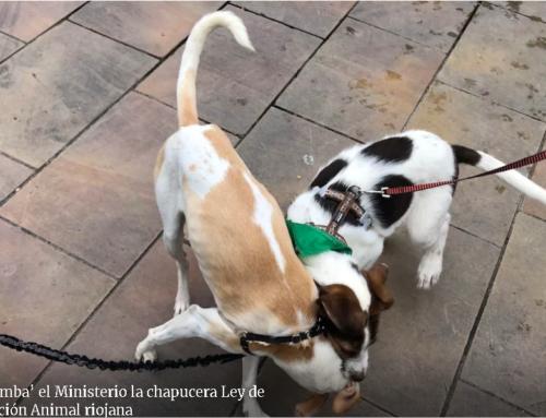 Así 'tumba' el Ministerio la chapucera Ley de Protección Animal riojana