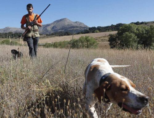 Los cazadores miran con optimismo a la campaña de media veda en la provincia