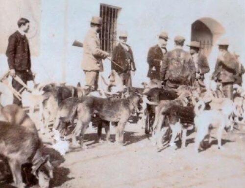 El Gobierno andaluz declara Bien de Interés Cultural las rehalas y la montería