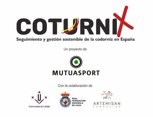 Nace 'Coturnix', un proyecto de ciencia ciudadana aplicada a la conservación de la codorniz común