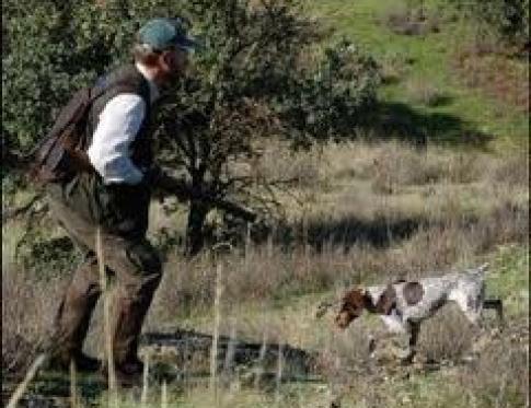 Federación de caza de Castilla y León